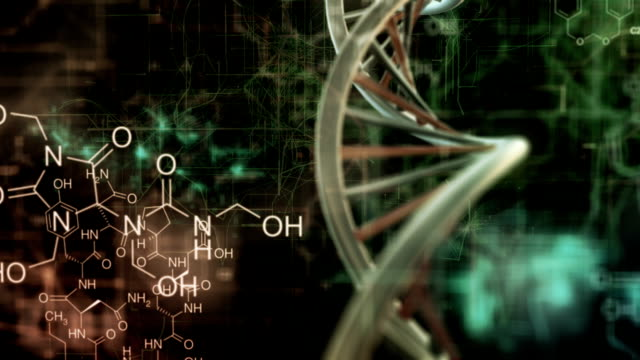 dna und chemestry - biology stock-videos und b-roll-filmmaterial