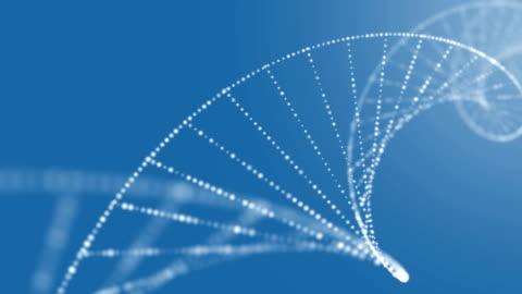dna 構造 - 幹細胞点の映像素材/bロール