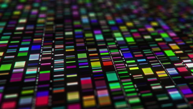 dna test - science and technology stock videos & royalty-free footage
