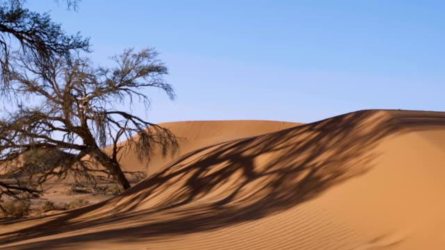 Düne in der Namib Wüste