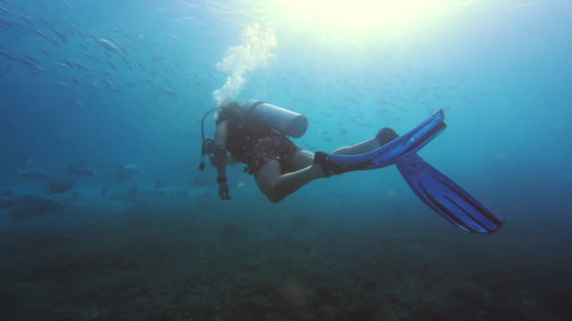 do more things that make you feel alive - deep sea diving stock videos & royalty-free footage