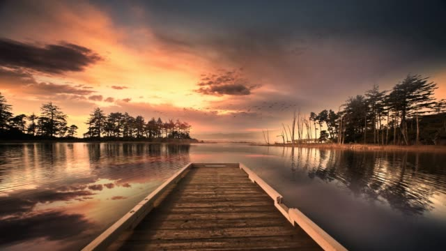dock on lake reflecting sky and birds - twilight stock videos & royalty-free footage