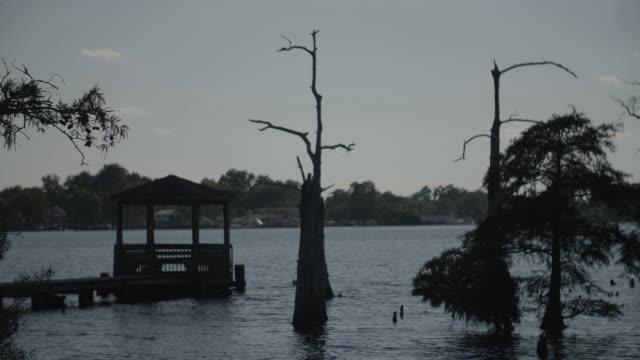 dock with gazebo and trees - gazebo stock videos & royalty-free footage