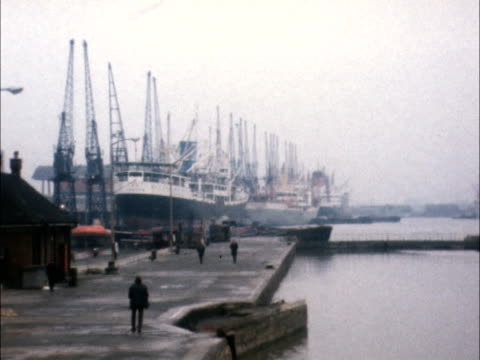 stockvideo's en b-roll-footage met docks one day stoppage england london west india docks gv silent dock ships berthed ms quay silent cranes gv silent cranes pan to more seen across... - liverpool engeland