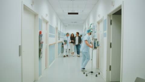 vídeos y material grabado en eventos de stock de doctor discutiendo con la pareja en el pasillo del hospital - pasillo característica de edificio