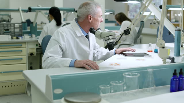 doctor examining samples through a microscope - laborkittel stock-videos und b-roll-filmmaterial