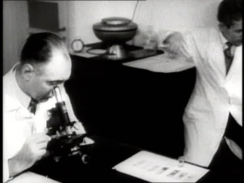 doctors and nurses work in a laboratory - 1940 stock-videos und b-roll-filmmaterial