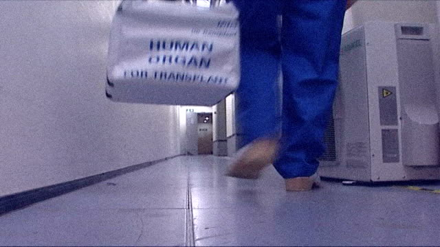 "stockvideo's en b-roll-footage met doctors find new drugs for kidney transplants; graphicised seq white holdall marked ""human transplant"" being picked up from hospital corridor then... - human kidney"