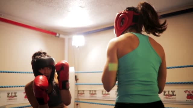 vídeos de stock, filmes e b-roll de esquivando-se e mergulhar no boxe - posição de combate