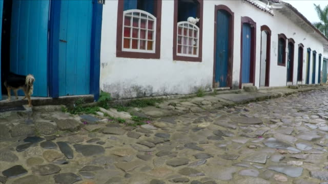 vídeos de stock e filmes b-roll de dog and cat in paraty - brazil - estilo colonial