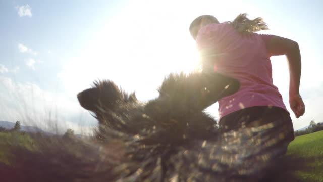 vídeos y material grabado en eventos de stock de pov perro y mujer del dueño en prado soleado - pelo de animal