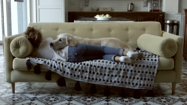dog and girl lying on sofa - riposarsi video stock e b–roll