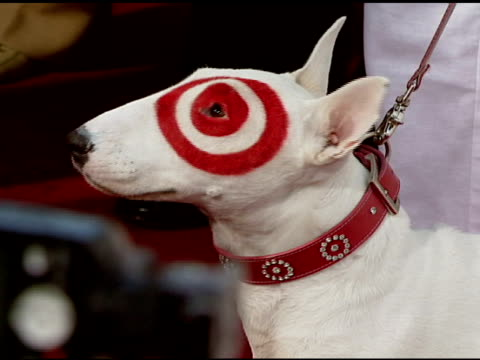 Dog at the Target Presents AFI's 40th Anniversary at Arclight Cinemas in Hollywood California on October 3 2007