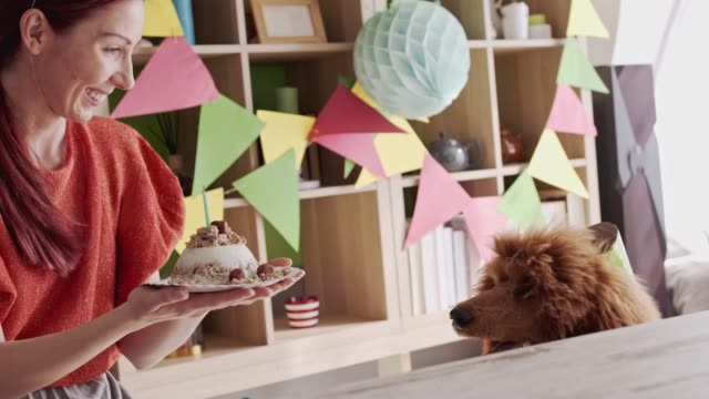 dog barking from excitement for the delicious doggy birthday cake his owner is holding - party hat stock videos & royalty-free footage