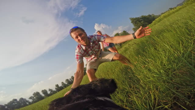 POV Dog bringing a ball to his owner in the sunny meadow