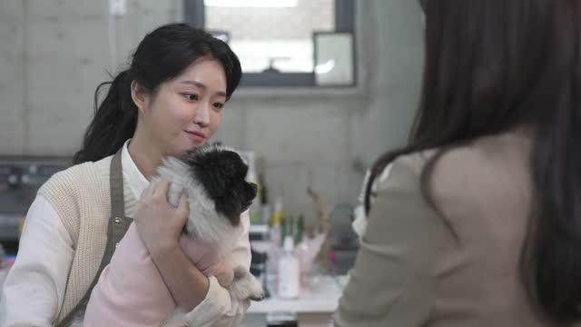 vídeos de stock, filmes e b-roll de dog cafe - young woman dog owner and employee embracing puppy - bichos mimados