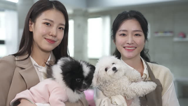 vídeos de stock, filmes e b-roll de dog cafe - young woman dog owner and employee looking at camera with smile while embracing puppy - bichos mimados
