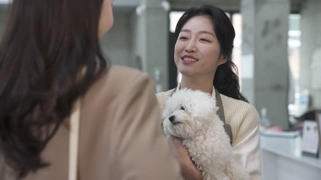 vídeos de stock, filmes e b-roll de dog cafe - young woman dog owner leaving puppy to employee in puppy kindergarten - bichos mimados