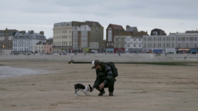 Dog catches ball on a beach in Margate, UK
