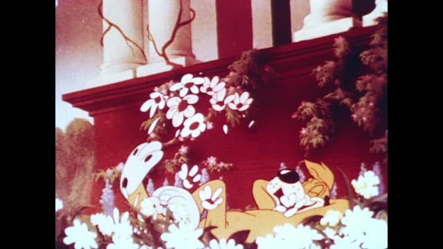 vidéos et rushes de dog delirious and happy, flopping around in flower bed - parterre de fleurs