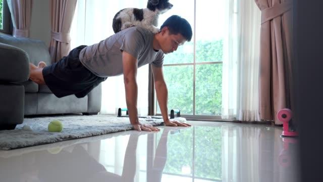 cane disturba uomini in casa allenarsi a casa - hobby video stock e b–roll