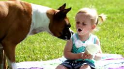 Dog eats ice cream