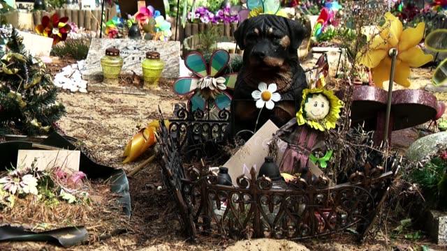 vidéos et rushes de dog gravestone - cimetière