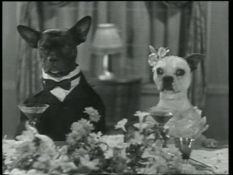 B/W 1930 dog in tux + dog in evening gown sitting at dinner table / Dogway Melody
