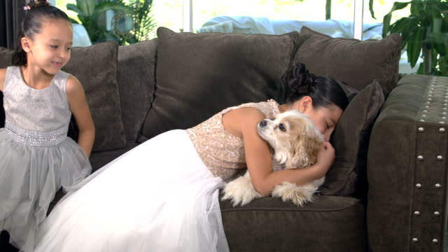 dog on sofa, girls join and hug - 6 7 years stock videos & royalty-free footage