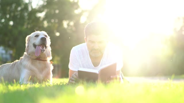 dog owner reading book with his pet in the park. - prato rasato video stock e b–roll