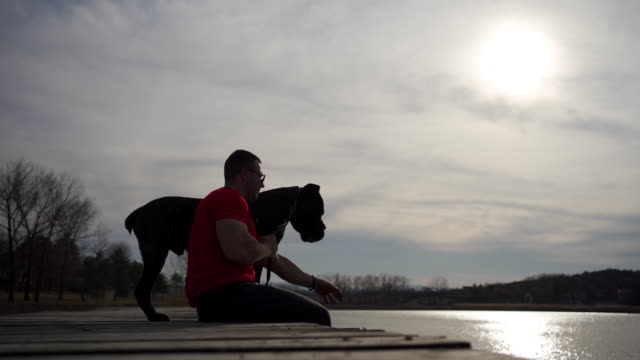dog owner sitting at pier on a lake and enjoying his time with his dog - purebred dog stock videos & royalty-free footage