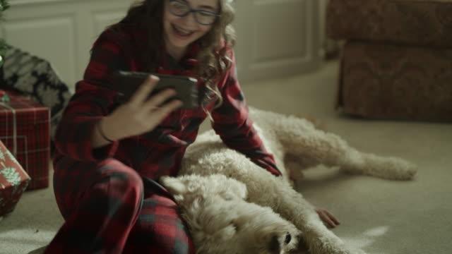 stockvideo's en b-roll-footage met dog performing trick for girl taking cell phone selfie on christmas / orem, utah, united states - orem utah