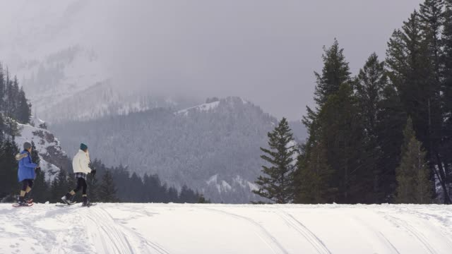 vídeos de stock, filmes e b-roll de dog running across snow cover hill as hikers follow - neve seca e solta