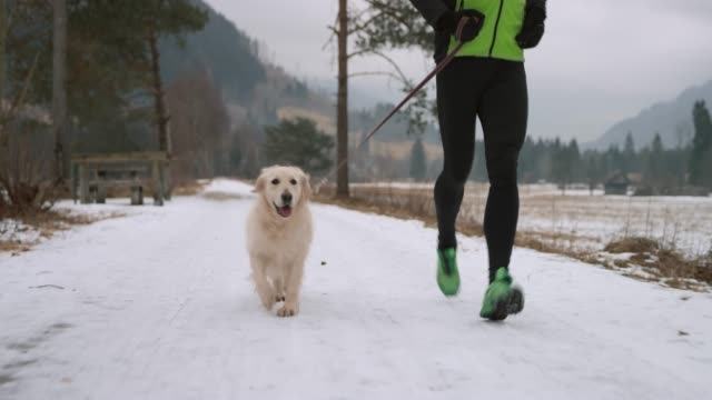 Dog running along its owner on a snowy walkway in cold weather