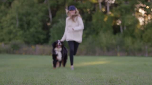 vídeos de stock, filmes e b-roll de cachorro correndo com seu dono - saliva de animal