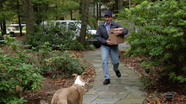 dog scaring away deliveryman on pathway leading to house - one animal点の映像素材/bロール