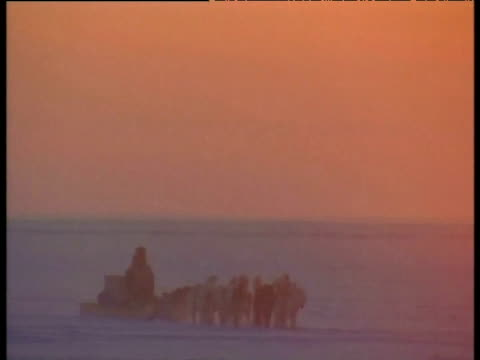 dog sled coming to rest in front of setting sun arctic - inuit stock videos & royalty-free footage