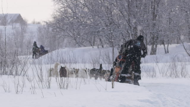 slo mo dog sledding through the snow in norway - sled dog stock videos & royalty-free footage