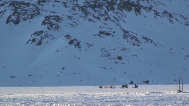 ws dog sledge crossing frozen sea, snow covered mountain in background, near tasiilaq, east greenland - peter snow bildbanksvideor och videomaterial från bakom kulisserna