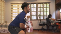 Dog squat : Man does squats holding Jack Russell Terrier instead of gym weights at home exercise