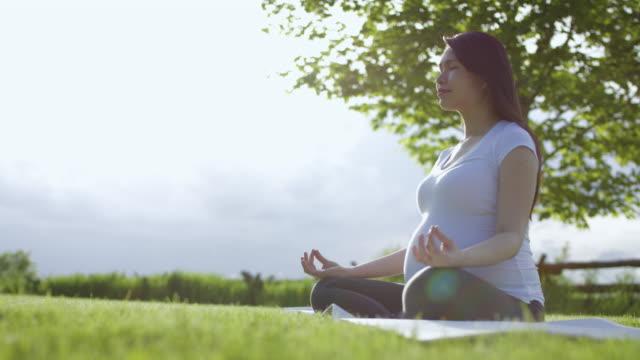 Hond verrassend zwangere vrouw doen Yoga