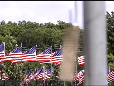 dog tag and row of flags - us memorial day stock videos & royalty-free footage