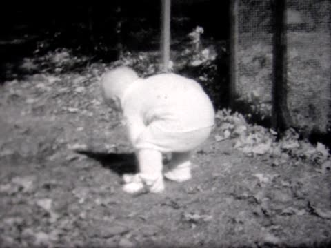 1934 dog takes toy away from toddler - one baby boy only stock videos & royalty-free footage