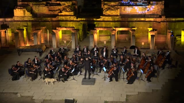 a dog took over the stage during a vienna chamber orchestra concert in the ancient city of ephesus a musicsavvy dog takes the stage during a vienna... - orchestra stock videos & royalty-free footage