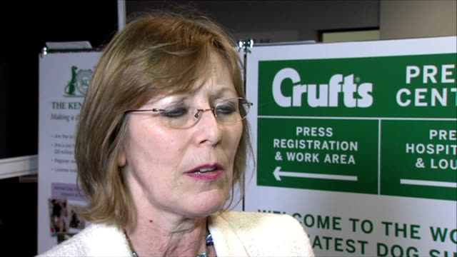 dog who died after competing at crufts may have been poisoned england west midlands birmingham int caroline kisko interview sot - crufts hundezuchtschau stock-videos und b-roll-filmmaterial