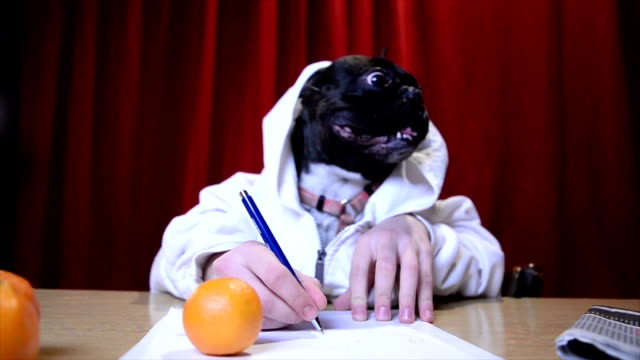 Dog writing with human hands