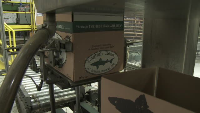 dogfish head 60 minute ipa packing and production - dogfish stock videos & royalty-free footage
