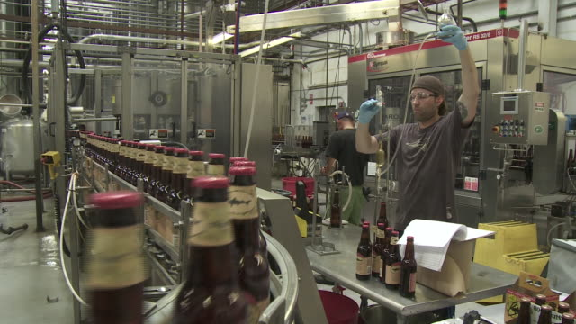 dogfish head beer bottles production with labels - dogfish stock videos & royalty-free footage