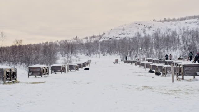 ds doghouses at one of norway dog sled lodges - wide shot stock videos & royalty-free footage