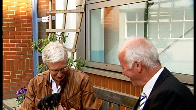 dogs being abandoned because of recession england londonbattersea dogs and cats home int dog 'candy' running up to barred gate dog lying in basket... - paul o'grady stock-videos und b-roll-filmmaterial